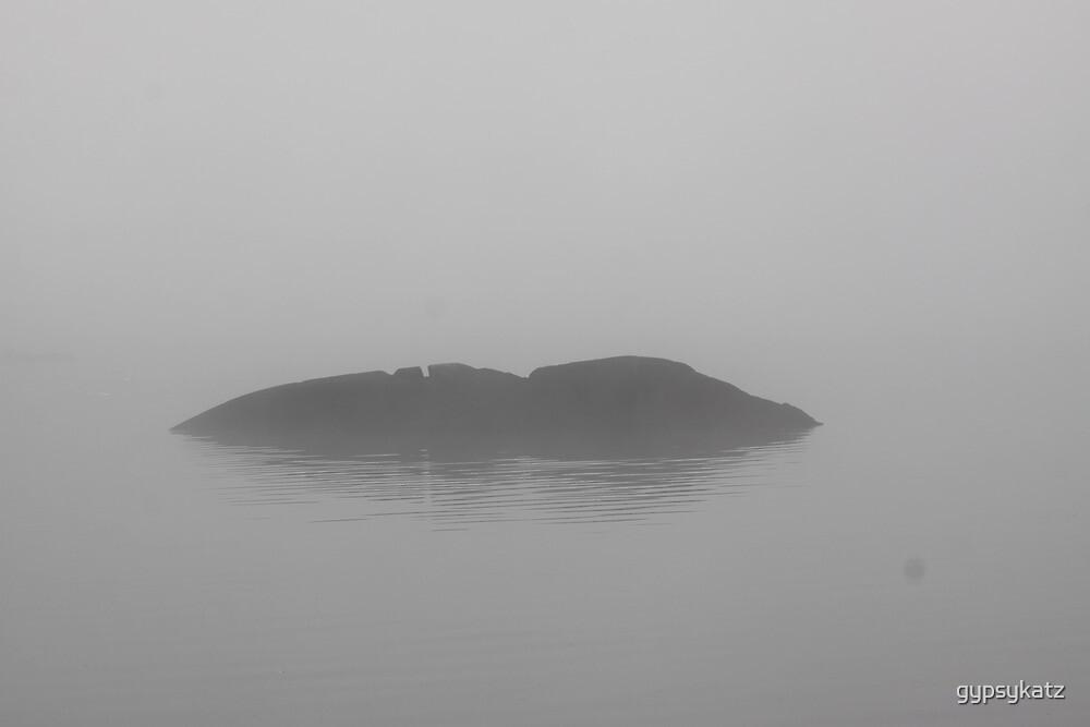 Foggy Morning Fishing  #12 by gypsykatz