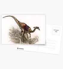 Kinnareemimus Postcards