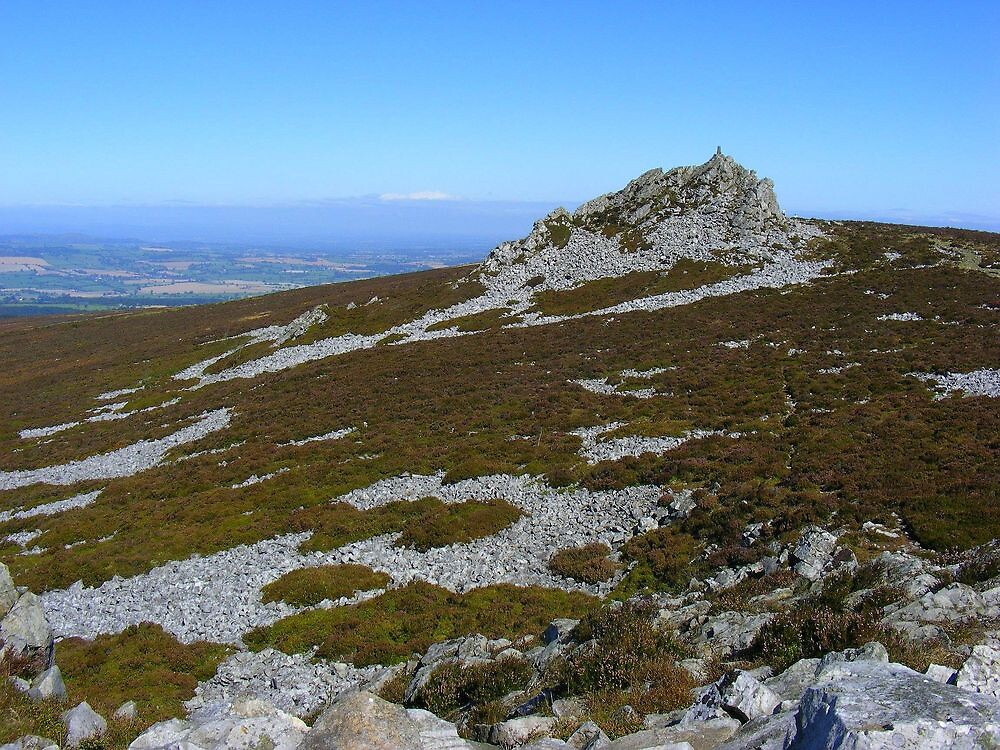 More Stiperstones by Dave646