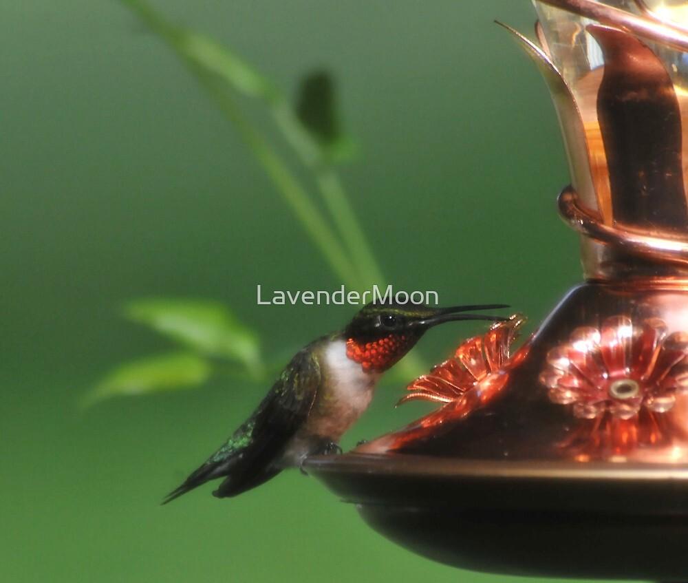 So, I Said...  by LavenderMoon