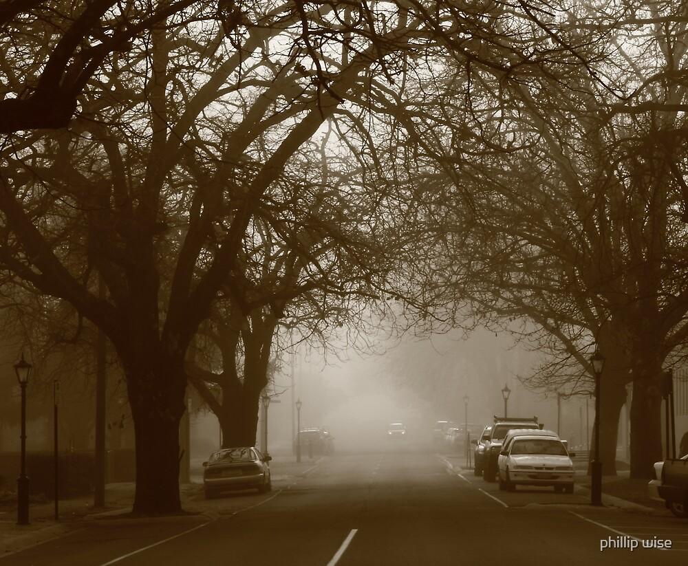 foggy start by phillip wise