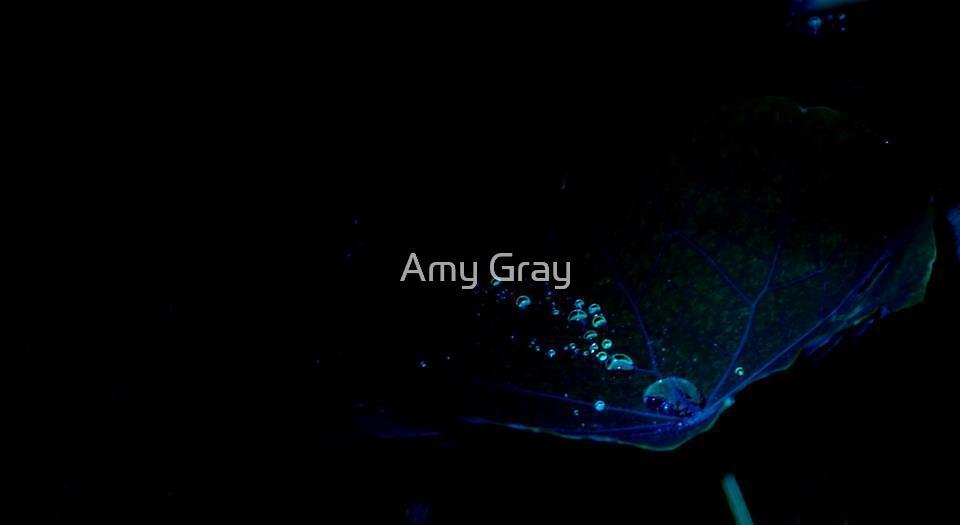 My Secret Garden - Where your dreams sleep by Amy Gray