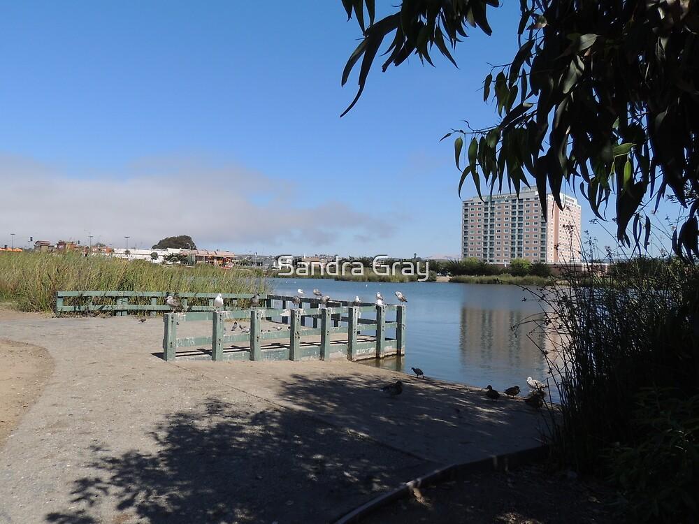 Any Given Thursday Seaside, CA Roberts Lake by Sandra Gray