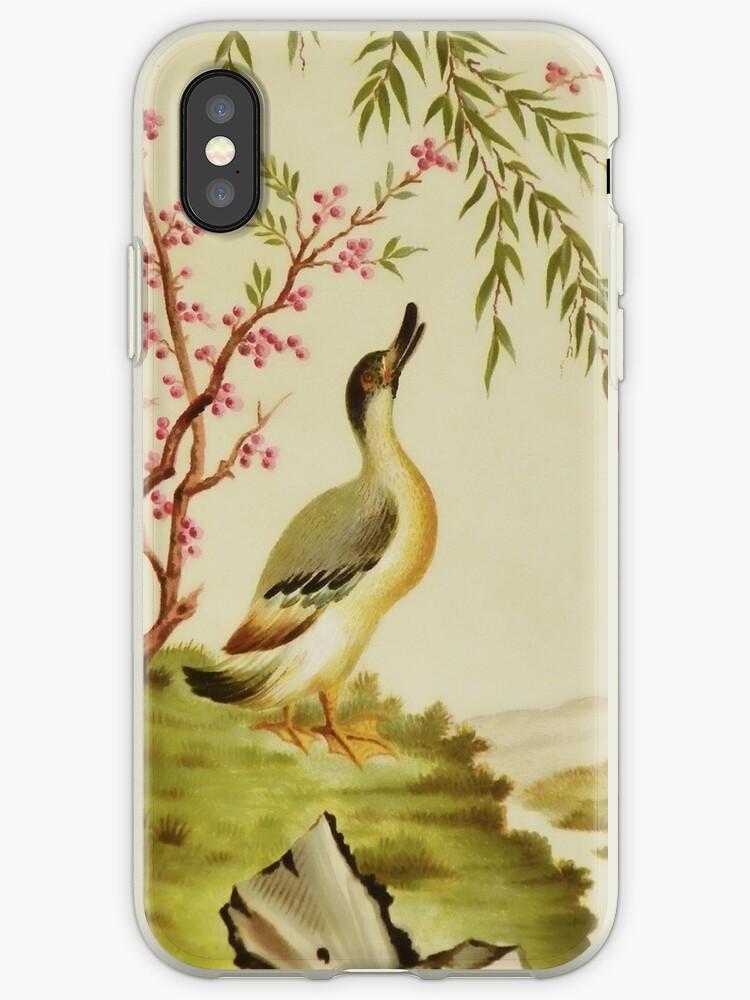 Duck Motif iPhone Case by Pamela Phelps