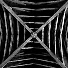 Chartham -St.Mary's - The Rafters - B&W by rsangsterkelly
