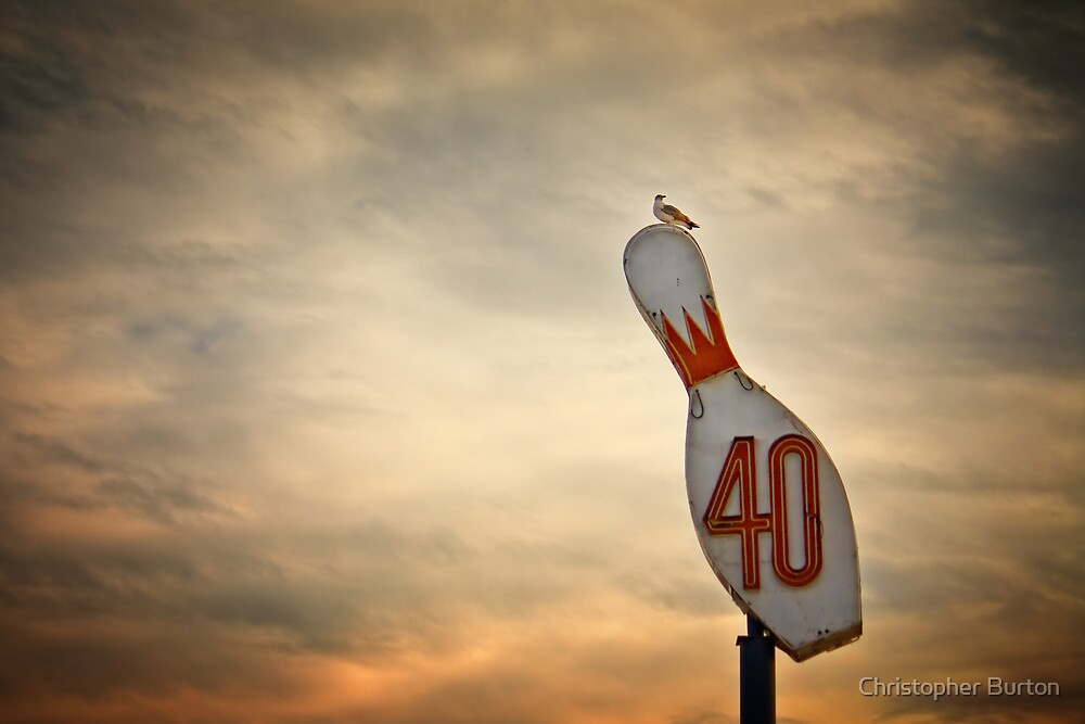 40 and a Gull by Christopher Burton