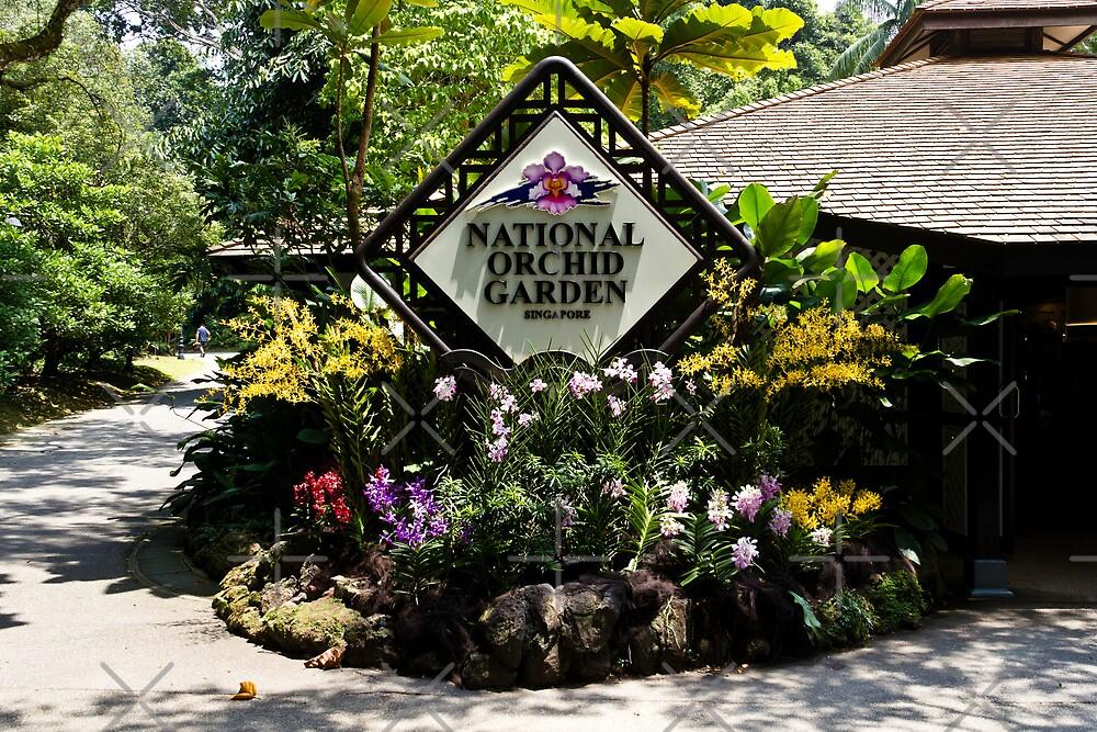 National Orchid Garden inside the Singapore Botanic Garden by ashishagarwal74