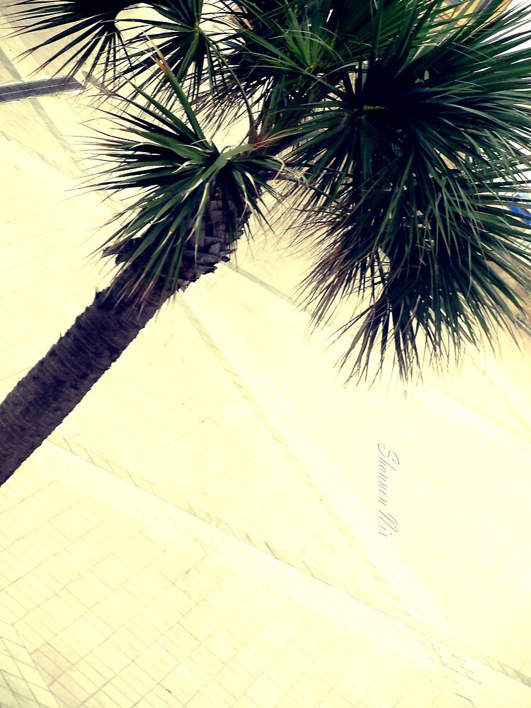 Palm in the Wind by Shannon Nix