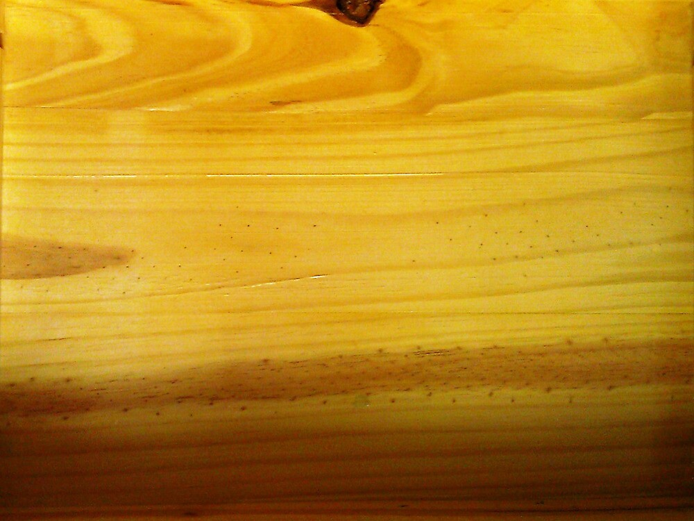Wood Tray...... by WhiteDove Studio kj gordon