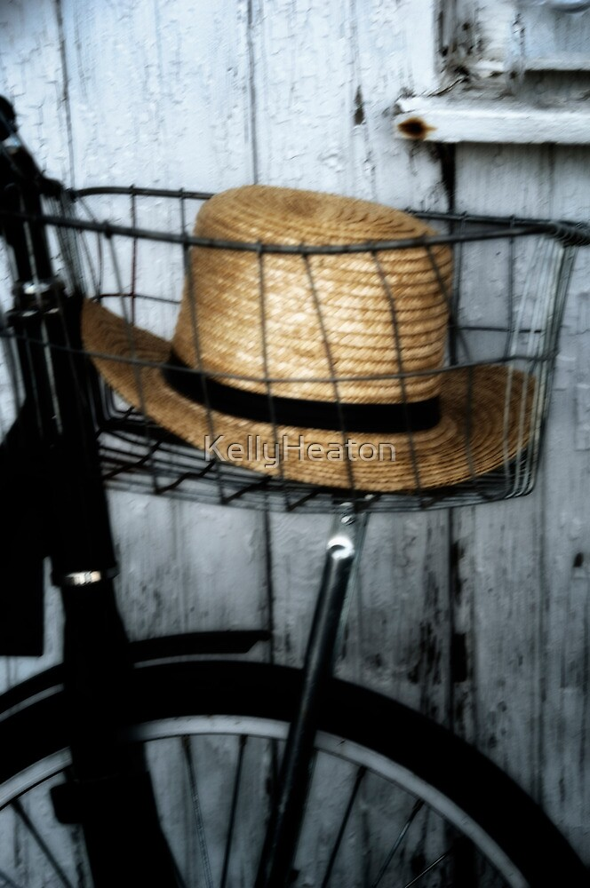 Amish Hat in Wire Basket by KellyHeaton