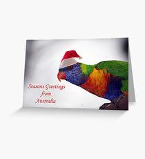 Australian Rainbow Lorikeet Christmas Greeting Card  Greeting Card