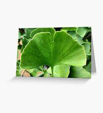 Ginkgo leaf Greeting Card