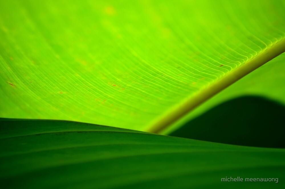 greens by michelle meenawong