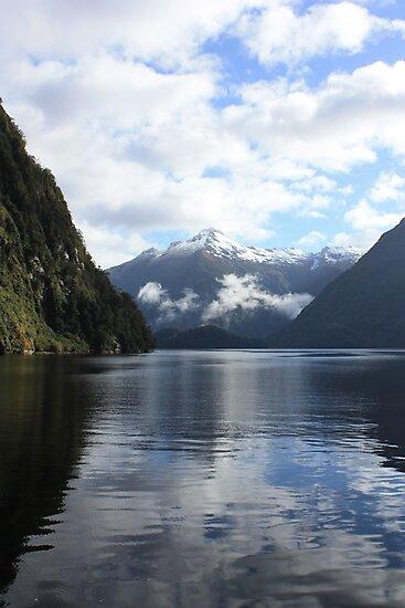 Fiordland Morning Mountains by Jon Charles