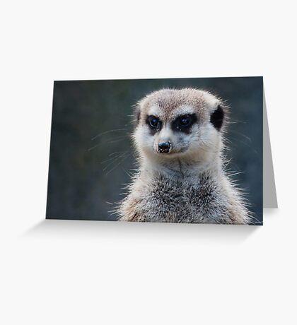 Meerkat Magic Greeting Card