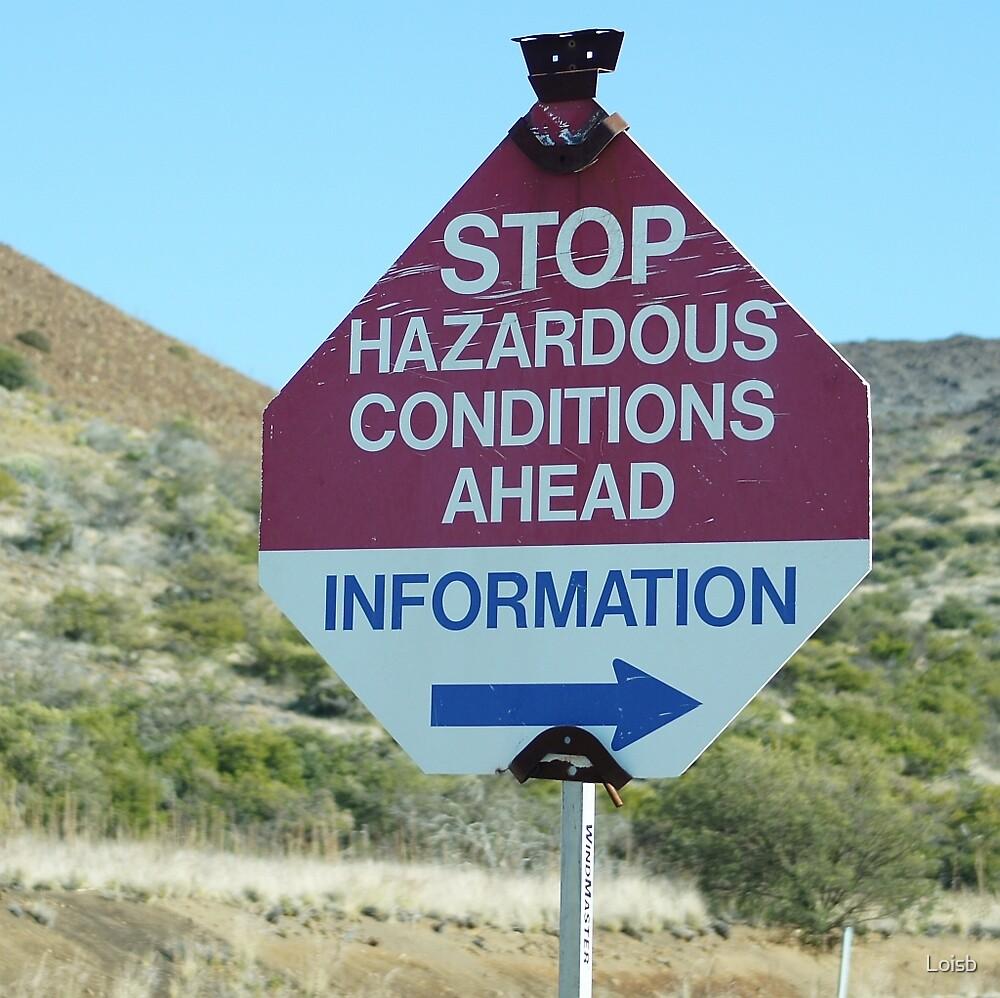 Hazard Ahead by Loisb