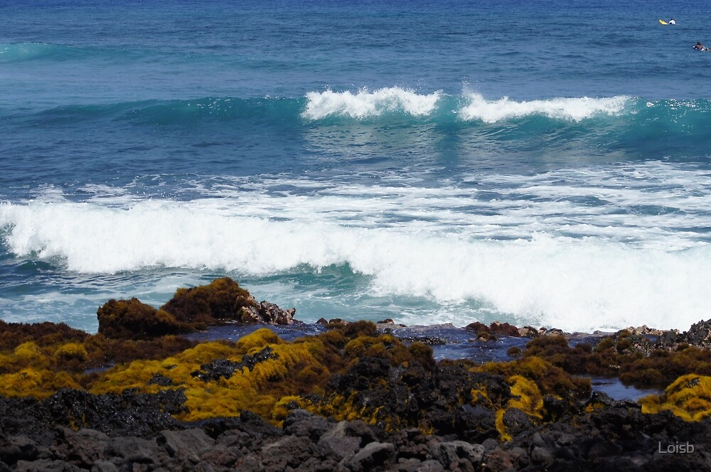 Waves on the Big Island by Loisb