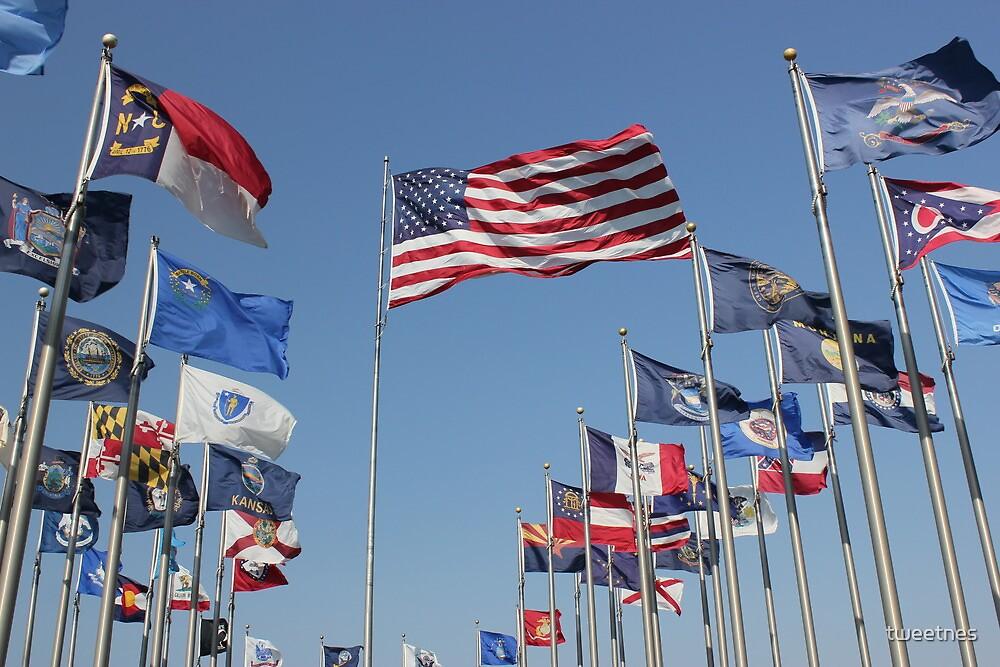 Flags  by tweetnes
