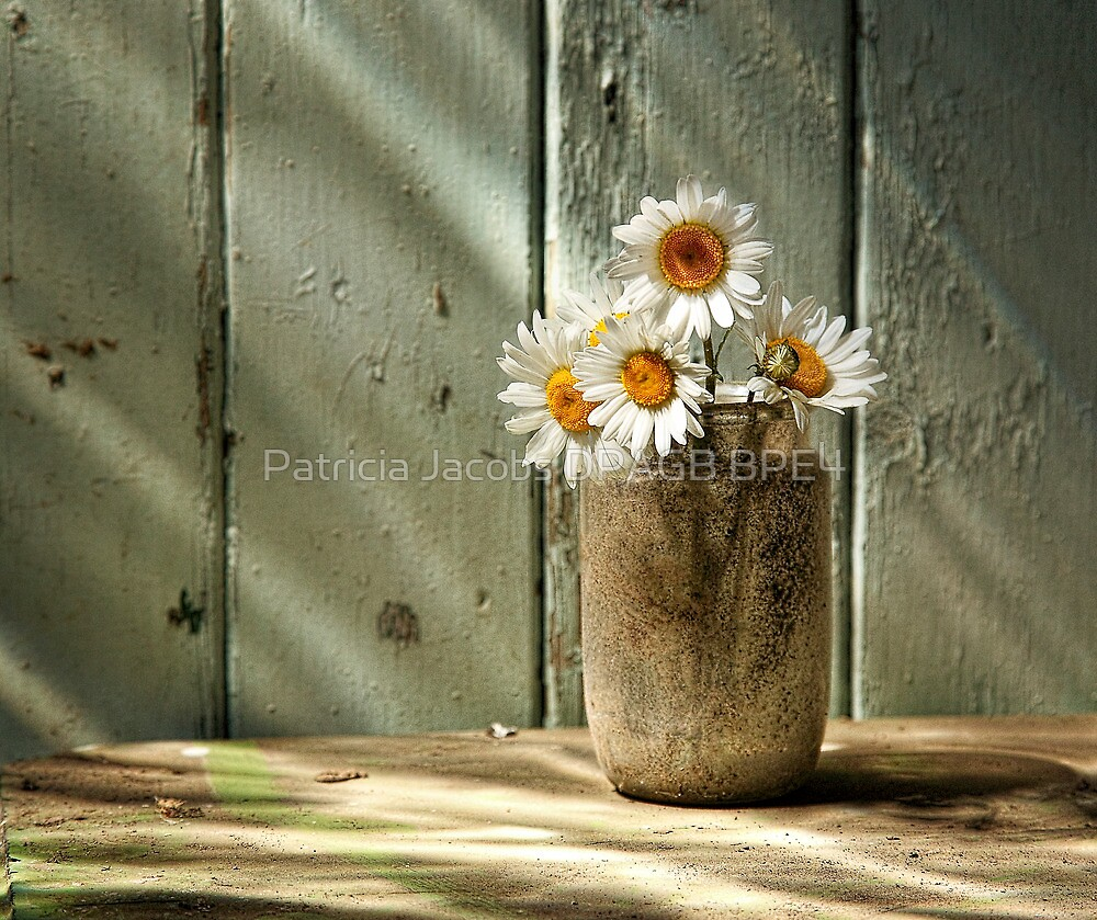 A Jar of Daisies by Patricia Jacobs DPAGB BPE4