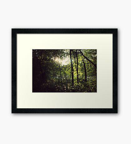 fairy ground II Framed Print