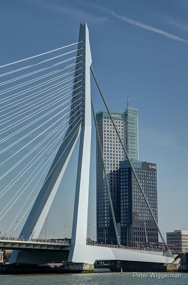 Erasmus bridge and Maastower by Peter Wiggerman