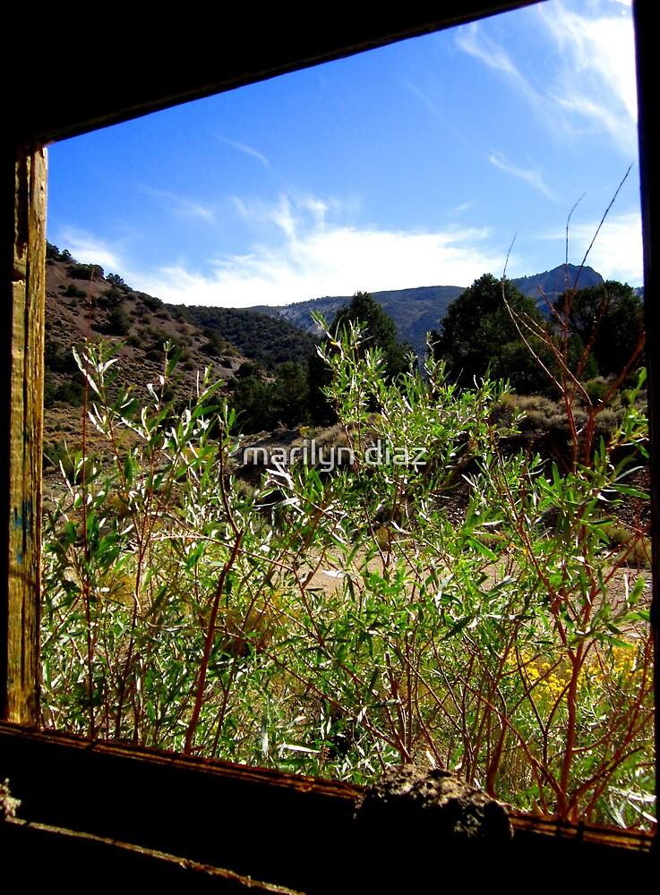 Series: Through the Window by marilyn diaz
