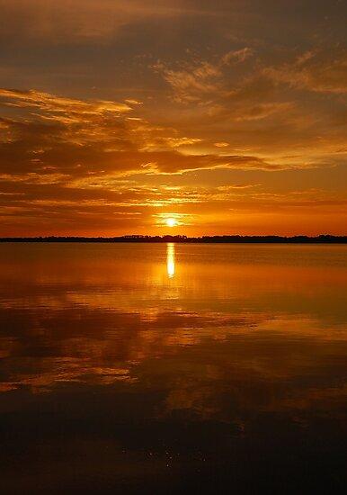 Lake Dora Sunset, Mt. Dora Florida by Shane Jones