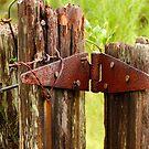 Hinged Post by Shane Jones