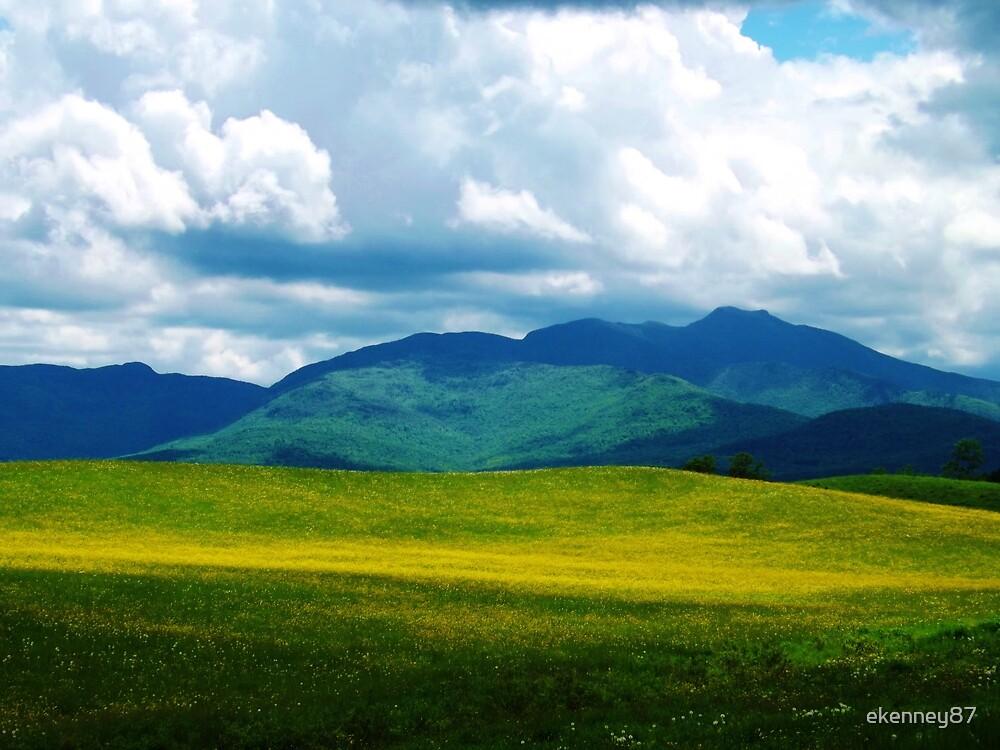 Green Mountain Grandeur by ekenney87