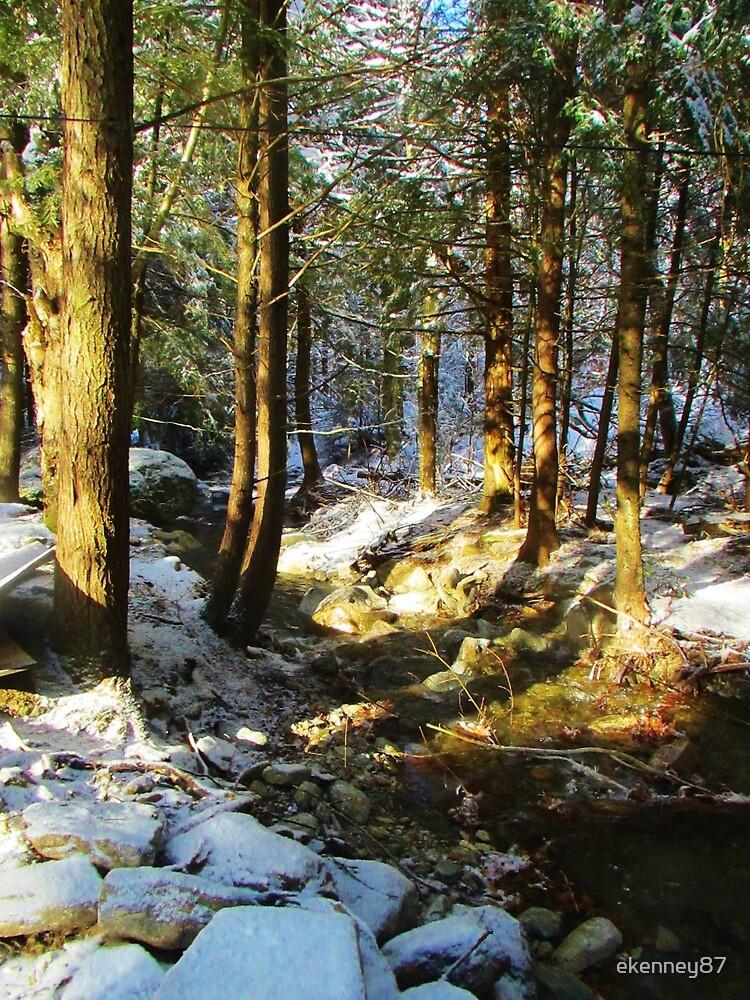 Winter Creek by ekenney87