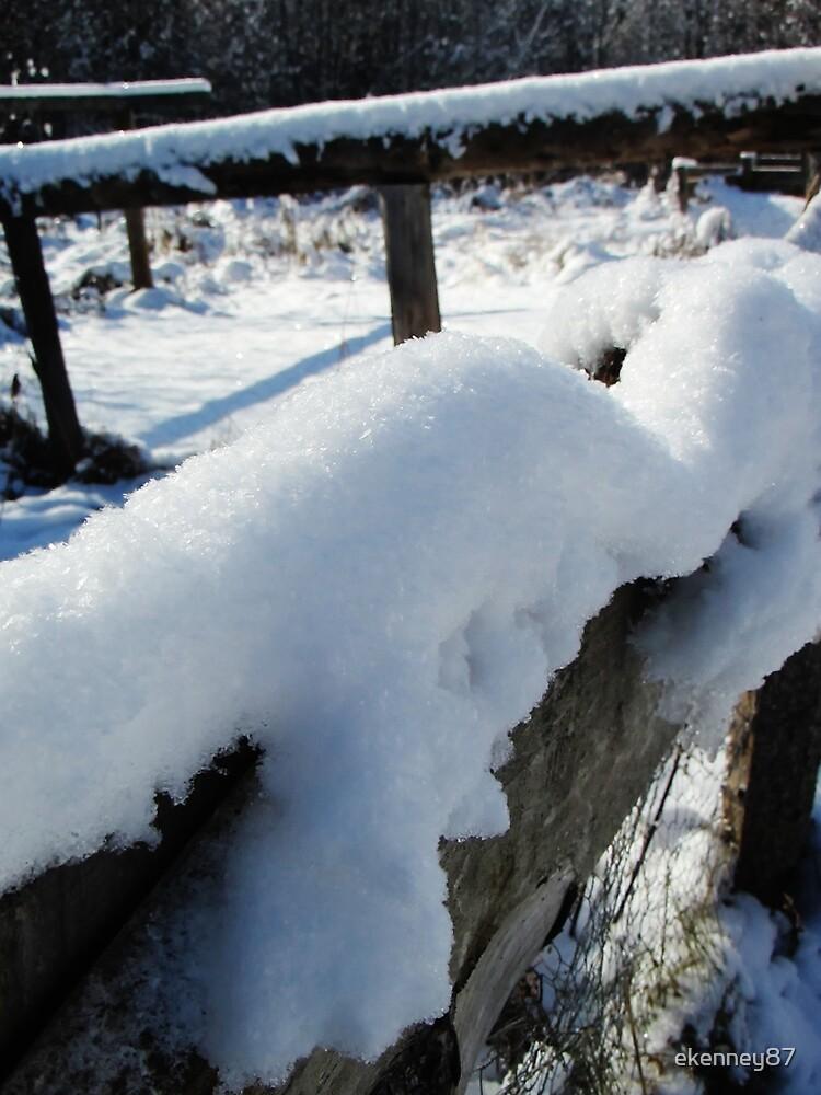 Snowy Fence by ekenney87