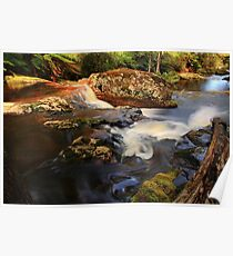 rock pools, halls falls. northeast tasmania Poster
