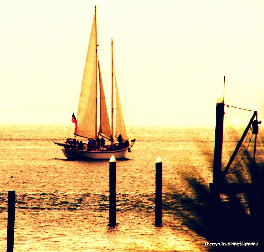 Sail crazy... by Sherry Russell