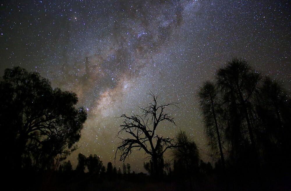 The Desert Stars by kcy011