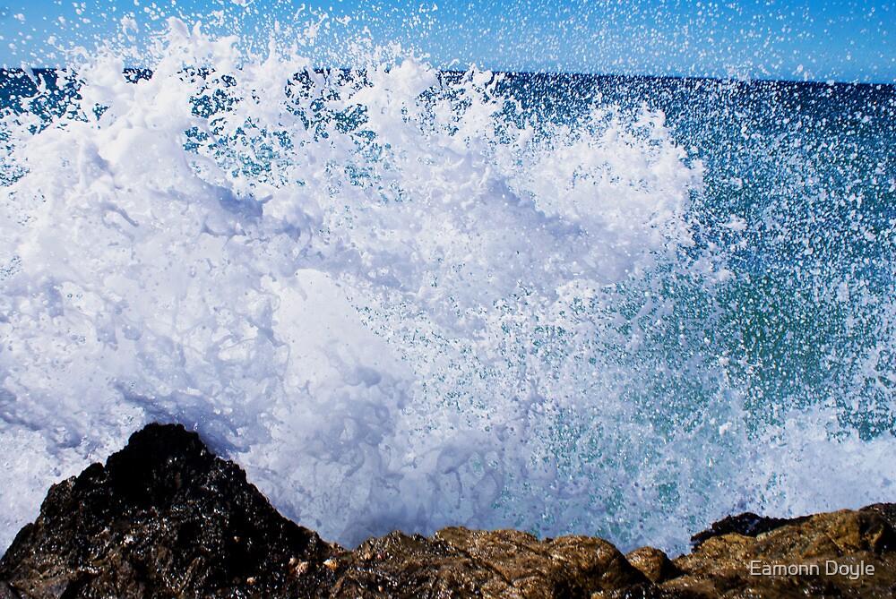 Ocean Spray by Eamonn Doyle