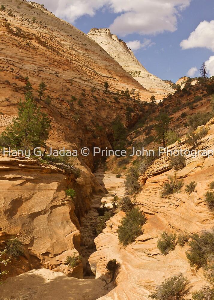 Driving Through Zion © by © Hany G. Jadaa © Prince John Photography