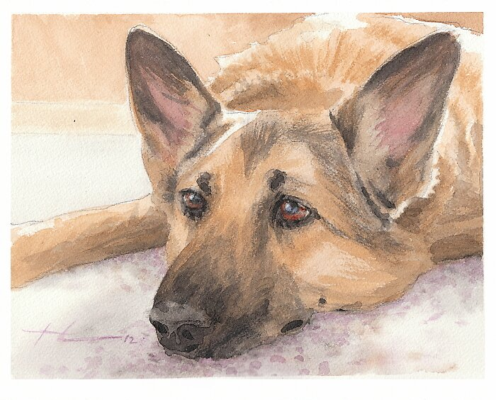 Comfy dog watercolor by Mike Theuer