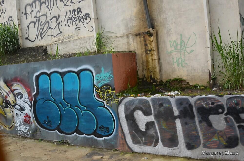 Costa Rica Grafitti by Margaret Shark