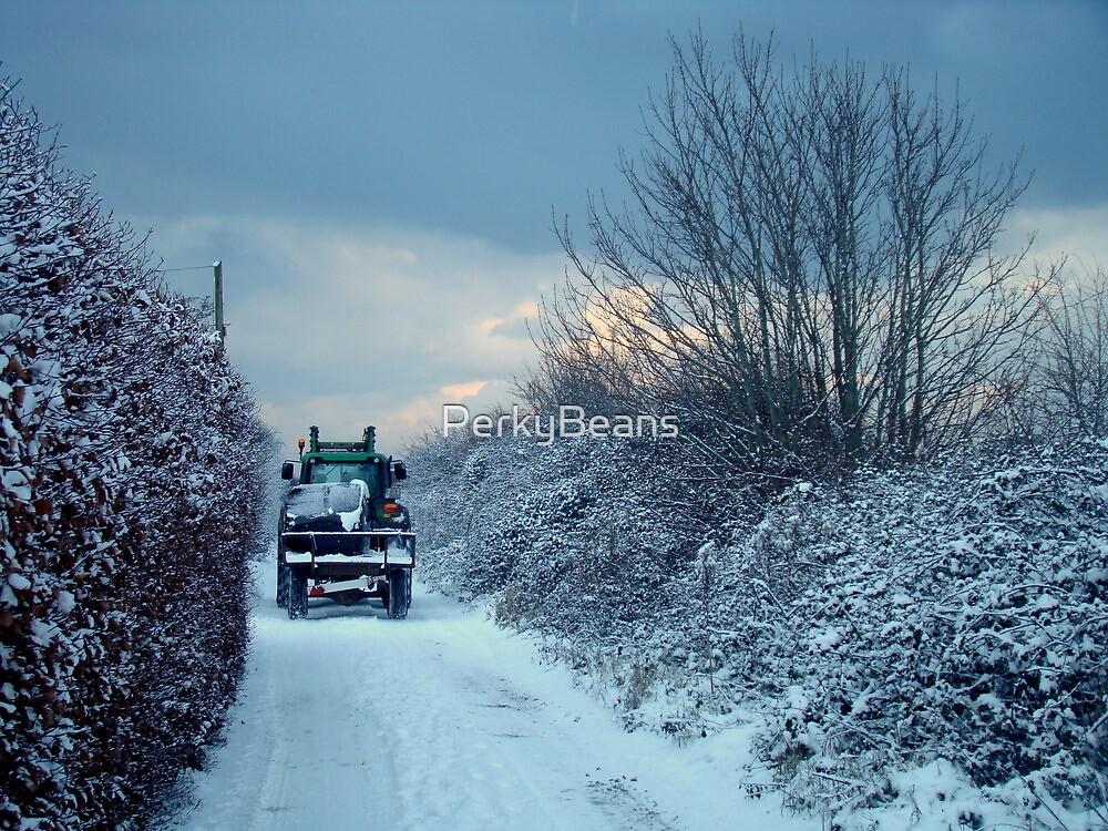 Irish Winter by PerkyBeans