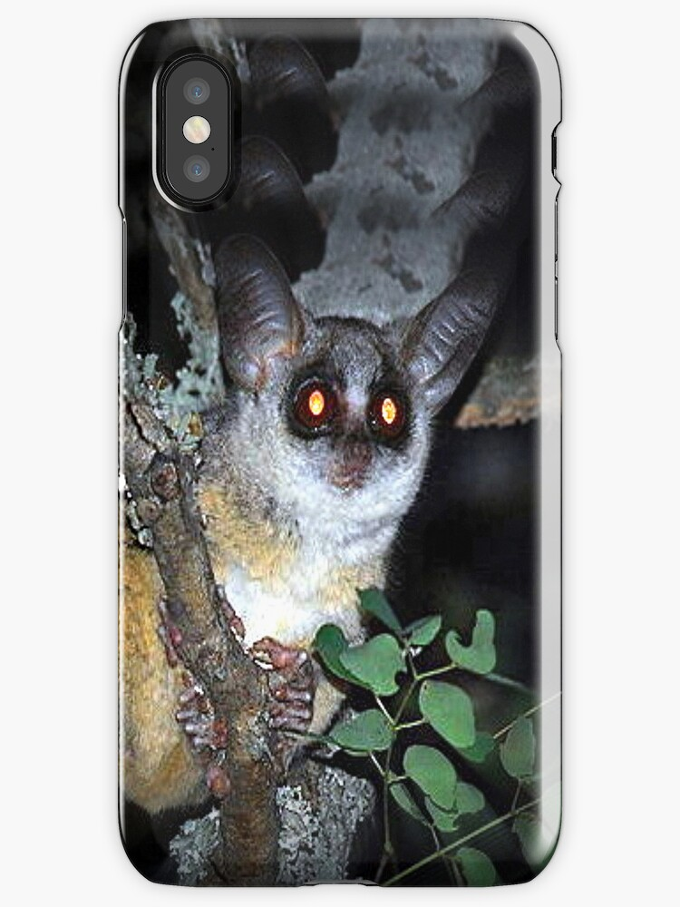 Bright Eyes - iPhone Case by naturelover