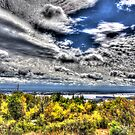 View from On Top of the Hill by Sharlene Rens