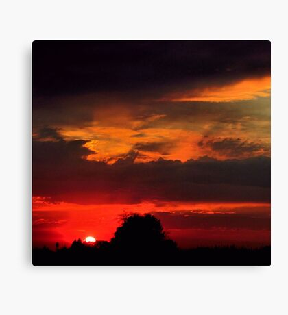 Brilliant Sunset Hues Canvas Print
