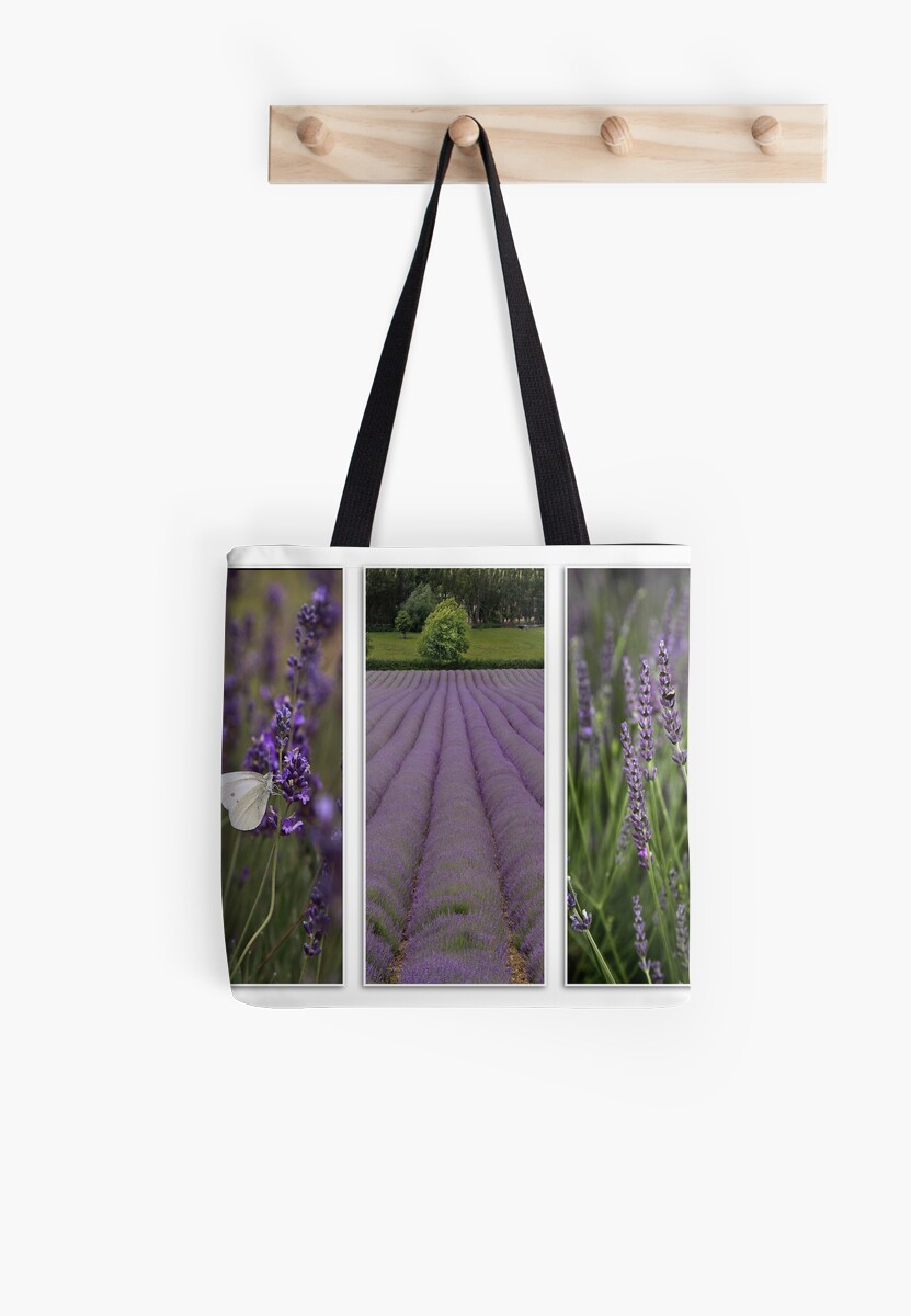 Lavender Field by Patricia Jacobs DPAGB LRPS BPE4