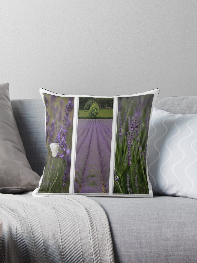 Lavender Field by Patricia Jacobs DPAGB BPE4