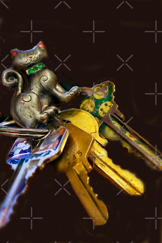Kitten on the Keys by Heather Friedman