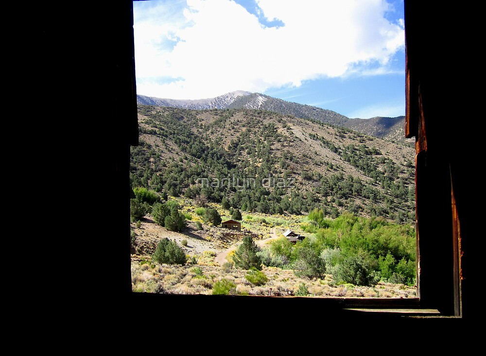 More From A Window by marilyn diaz