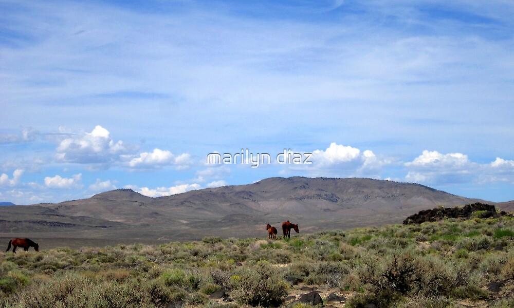 Nevada Living by marilyn diaz