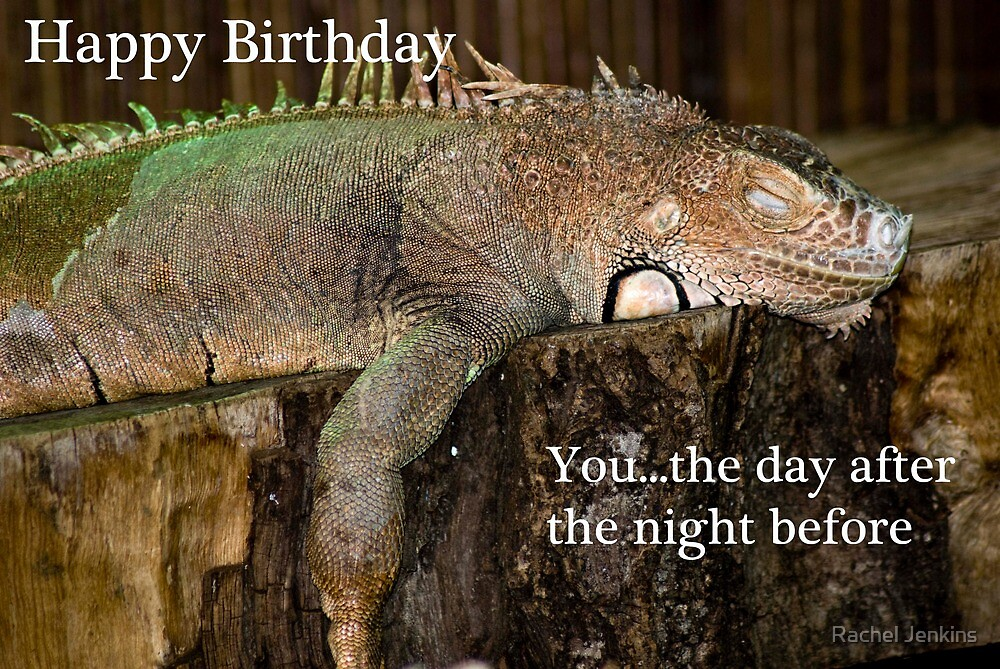 Happy Birthday - Iguana by Rachel Jenkins
