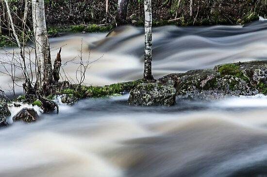 River four by Henry Moilanen