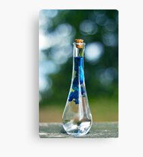 Potion Crafting Canvas Print